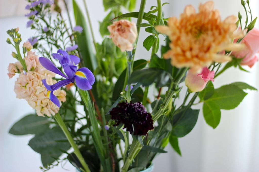 Bloomon bloemen review